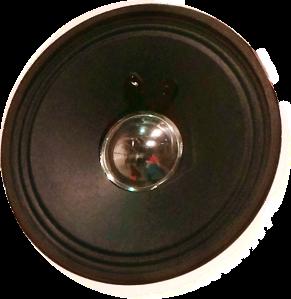 speaker_plain_outi_k